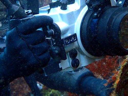 ダイビング メタルウインターグローブ