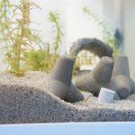 水槽の砂の一部が黒く変色