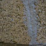 コロナでの自粛期間を有効に使うため普段できない外壁の補修をする。
